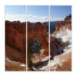 Bryce Canyon Natural Bridge Snowy Landscape Photo Triptych