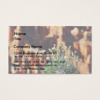 Bryce Canyon Rim Business Card