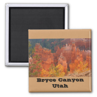 Bryce Canyon Utah 2 Inch Square Magnet