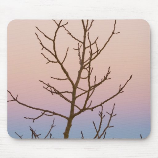 Bryce Canyon, Utah. Bare tree in front of sunset Mouse Pads