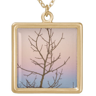 Bryce Canyon, Utah. Bare tree in front of sunset Square Pendant Necklace