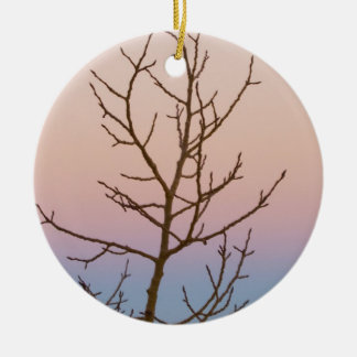 Bryce Canyon, Utah. Bare tree in front of sunset Christmas Tree Ornaments