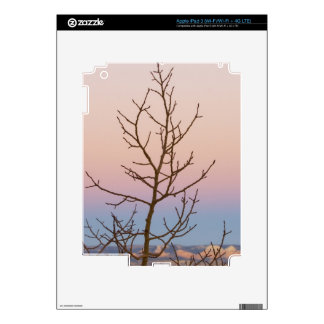 Bryce Canyon, Utah. Bare tree in front of sunset Skin For iPad 3