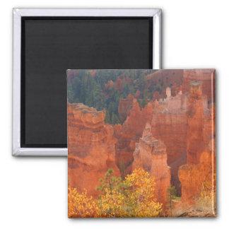 Bryce Canyon Utah Fridge Magnets