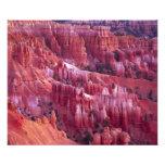 Bryce Canyon, Utah, USA Art Photo