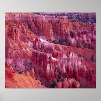 Bryce Canyon, Utah, USA Poster