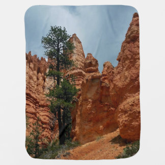 Bryce Point   Bryce Canyon Utah Baby Blanket