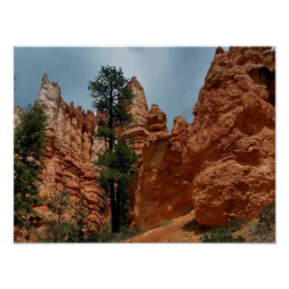 Bryce Point   Bryce Canyon Utah Poster