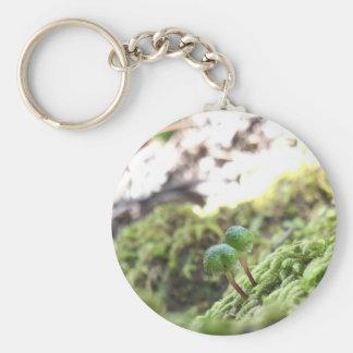 Bryophyta Umbrellas Keychain