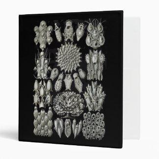 Bryozoa Binder