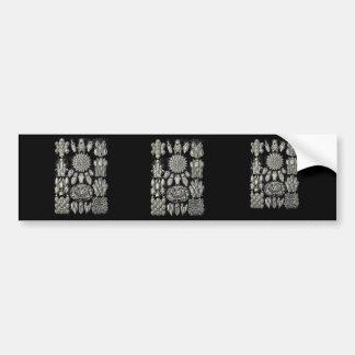 Bryozoa Bumper Stickers