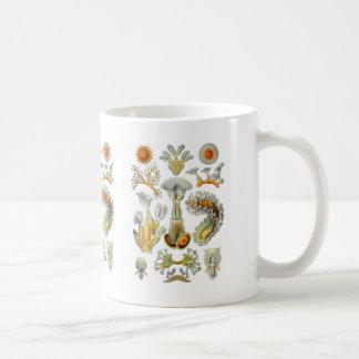 Bryozoa Coffee Mug