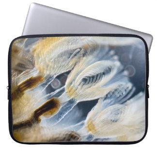 Bryozoa Laptop Computer Sleeve