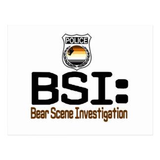 BSI:  Bear Scene Investigation Postcard