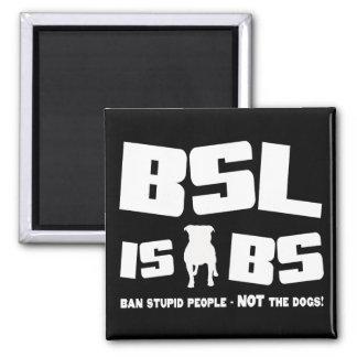 BSL es BS - imán