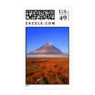 buachailleetivemor postage