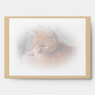 Bubba el Tabby anaranjado Tomcat