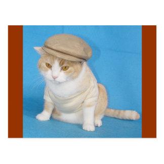 Bubba Kitty Postcard