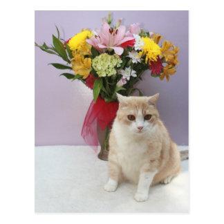 Bubba por las flores tarjetas postales