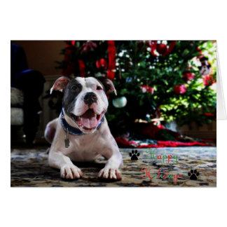 Bubba's Happy Holidays Card