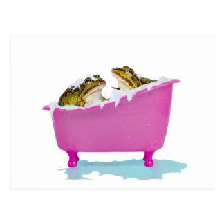 Bubble bath for pet frogs postcard