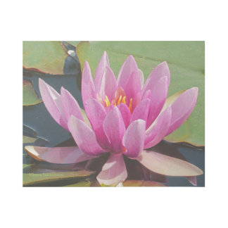 """""""BUBBLE-GUM PINK LOTUS BLOSSOM"""" GALLERY WRAP"""