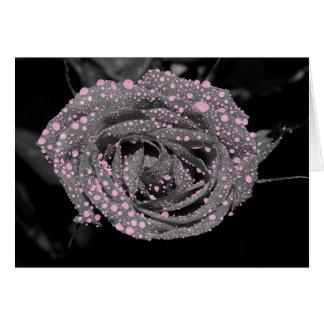Bubblegum Color Splash Rose Card