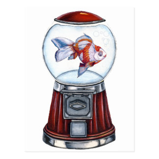 BubbleGum Goldfish Postcard
