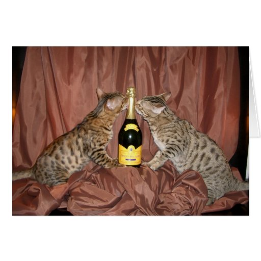 Bubbles for Bengals Greeting Card