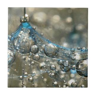 Bubbles Ceramic Tiles