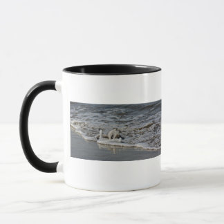 Bubbly Oregon Surf Mug