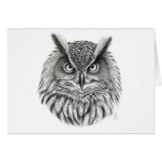 Bubo bubo owl cards