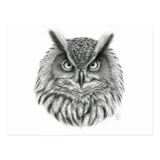 Bubo bubo owl postcards