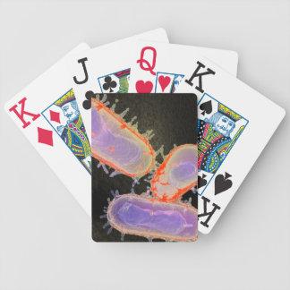 Bubonic Plague Playing cards