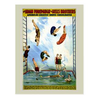 Buceadores del vintage del circo Forepaugh y de Tarjeta Postal