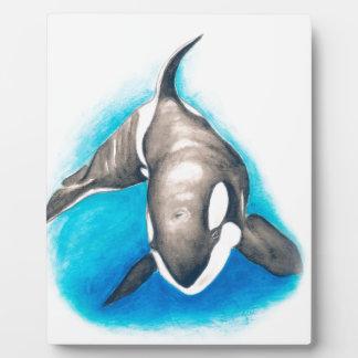 Buceo de profundidad de la orca placa para mostrar