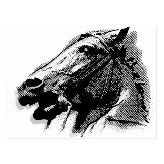 Bucephalus Tarjetas Postales
