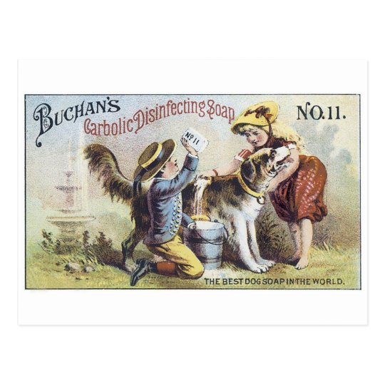 Buchans Carbolic Disinfecting Soap Postcard