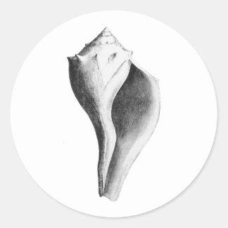Bucino canalizado (línea arte) pegatina redonda