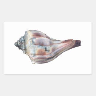 Bucino nudoso Shell Pegatina Rectangular