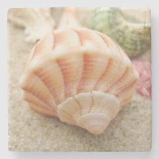 Bucino rayado del relámpago de Shell del mar Posavasos De Piedra