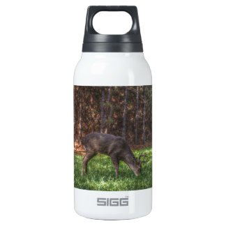 Buck 10 Oz Insulated SIGG Thermos Water Bottle