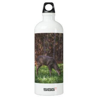 Buck Aluminum Water Bottle