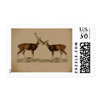 Buck and Doe Mountain rustic wedding stamp