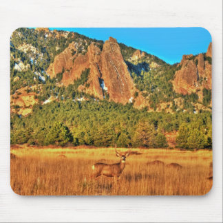 Buck and Flatirons Mouse Pad