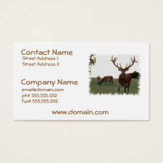 Buck Business Cards