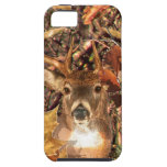 Buck Camouflage White Tail Deer iPhone 5 Covers