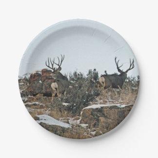 Buck deer first snow paper plate