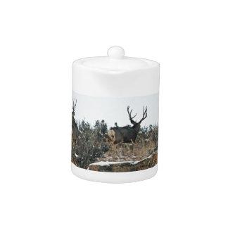 Buck deer first snow teapot