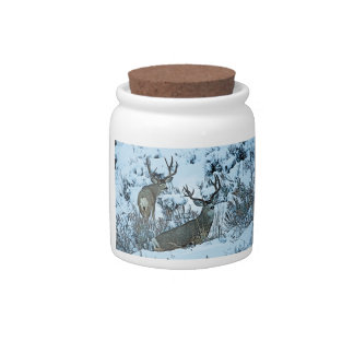 Buck deer in snow candy dishes